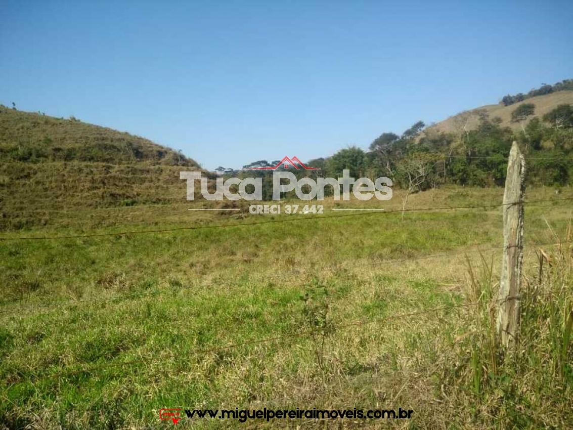 16 Alqueires - Muita terra e pastagem | Código:F117