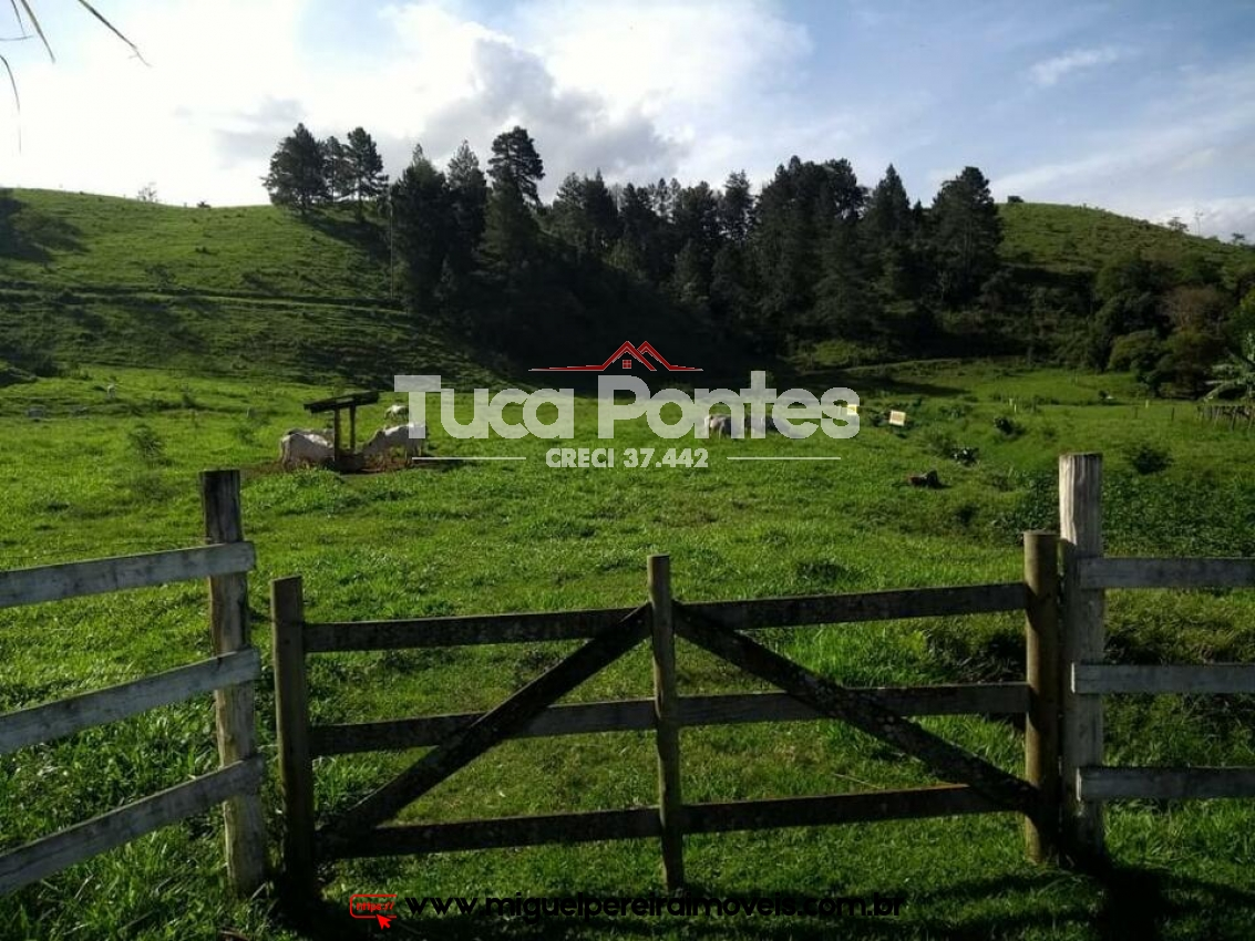 103 alqueires - Linda fazenda, raridade | Código:F6