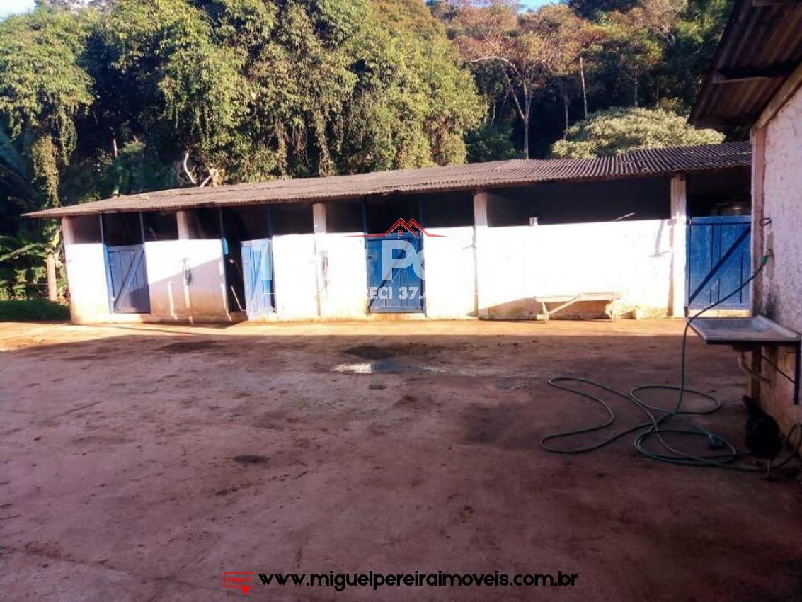 3 Alqueires mineiros - Moradia e faturamento certo. | Código:S66