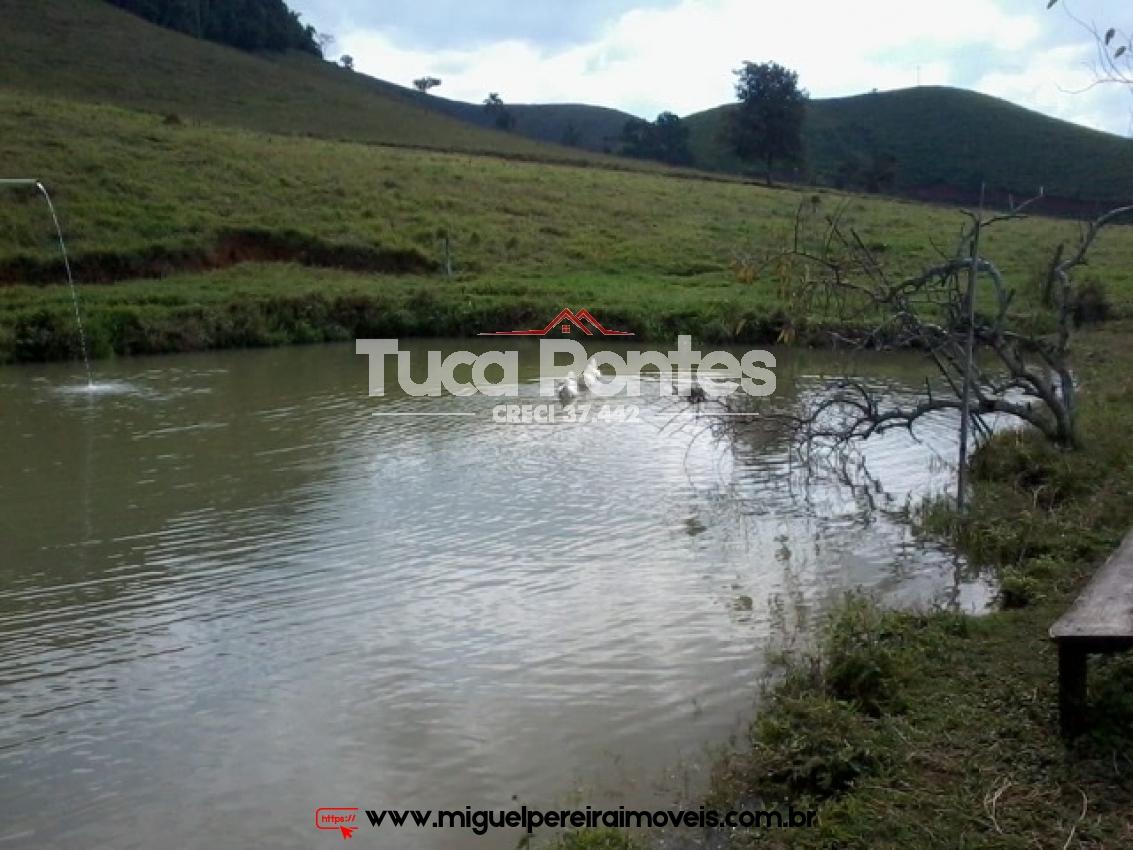 Oportunidade  - Rica em pastos e água  | Código:F110